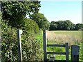 SJ8259 : South Cheshire Way by Steve Lewin