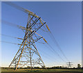 SU3616 : Pylons between Church Lane, Nursling and M27 motorway by Peter Facey