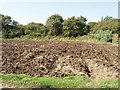 SP6709 : Ploughed field by Westfield Farm, Long Crendon by David Hawgood