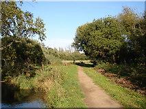 TL1630 : Footpath on Oughtonhead Common by John Lucas