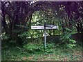 TM3272 : Roadsign on Low Road by Adrian Cable