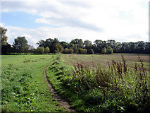 SE8721 : Footpath to Alkborough by David Wright