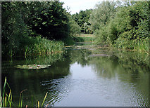 SP7940 : Stony Stratford Conservation Area by George Mahoney