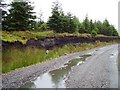 NN2125 : New forest road by Richard Webb