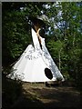 SX3170 : Tepee in Bicton Wood by Penny Mayes