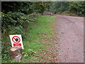 SO5207 : Logging in Pwllplythin Wood by Philip Halling