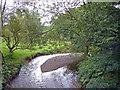 SJ8979 : Mottram St. Andrew / Prestbury - River Bollin by Mike Harris