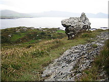 V6453 : The Cailleach Beara or the Hag of Beara by Nigel Cox