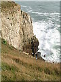 SY9775 : Portland limestone cliffs, West Man by N Chadwick