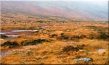 NX4288 : Bogs Near Castle on Oyne by Mick Garratt