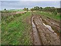 SE9959 : Green Lane! by Stephen Horncastle