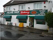 SS9272 : Wick Village Shop by caroline n