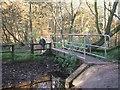 SJ9303 : Footbridge on Monarch's Way by John M