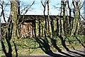 SW7648 : Green Barn by Tony Atkin