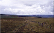 NY8193 : Pennine Way approaching Redesdale Forest by Chris Heaton