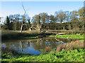 SJ6370 : Pool near Vale Royal Locks by Ian Nadin