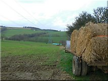 NJ6241 : Hay bales and pylons by James Allan