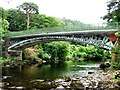 SH7955 : Betws Y Coed iron bridge by RAY JONES
