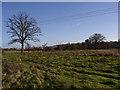 SU4593 : Fallow fields near Drayton by Andrew Smith