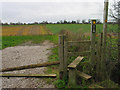 SJ7473 : Path across the fields, Lower Peover by Ian Nadin