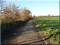 TG0014 : Back Lane 1.2 Km SE Northall Green EAST DEREHAM Norfolk by Clem Maginniss