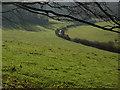 SU7592 : Pastoral farmland, Ibstone by Andrew Smith