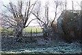 TF3607 : The back of Swan Bridge Farm by Jonathan Billinger