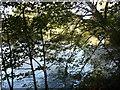 SK2564 : River Derwent by Roger McLachlan