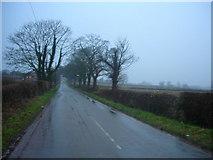 SJ5265 : Wet road - Willington Lane by Felix Hemsted