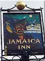 SX1876 : The Jamaica Inn Pub Sign by Maigheach-gheal