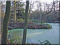 SJ5583 : Pond in Big Wood by Mike Harris