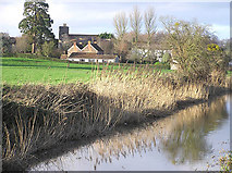 ST3031 : North Newton and church from the canal by Martin Southwood