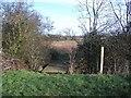 SP9463 : Footpath to Wymington by Nigel Stickells