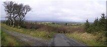 H3252 : Road at Effernan Glebe by Kenneth  Allen