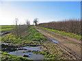 TA0958 : Track To Kelk Beck by Stephen Horncastle
