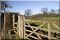 SJ7573 : Stile, Gate and Footpath by Marcus Hargis