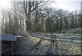 SJ7672 : Farm Track by Marcus Hargis