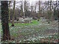 TF9336 : The Abbey grounds, Little Walsingham, Norfolk by John Salmon