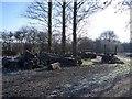 SP9255 : Timber Haulage near Harrold by Nigel Stickells