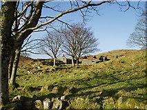 NR7185 : Barbreack Farmstead by Chris Purslow