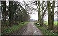 TL0036 : Byway near Steppingley Copse by Rob Farrow