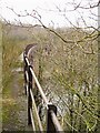 NY4175 : Viaduct over River Liddle by Howard Mattinson