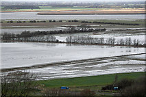 SE8722 : Alkborough Flats in Winter by David Wright