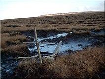 SE0403 : Westland Lysander V9403 Aircraft Wreckage by John Fielding