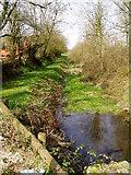 SS3009 : Bude Canal near Wooda Farm by Thor Beverley
