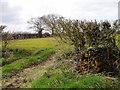 SJ7081 : Farmland in March at Winterbottom by R Greenhalgh