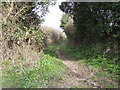SW6927 : Bridleway to Trenoweth by Jonathan Billinger