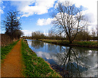 SU5666 : Kennet and Avon Canal from Heales Lock by Pam Brophy