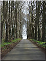 SP4623 : Driveway, Barton Lodge by Andrew Smith