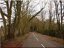 SZ0397 : Arrowsmith Road, Merley by Simon Scurr